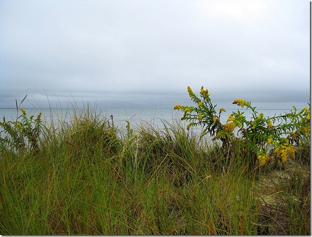 Shelter Island 014