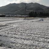 名残雪2110304.JPG