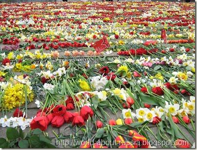 Цветы возле памятника Победе в Риге