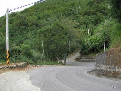 2009-1010-082539.JPG