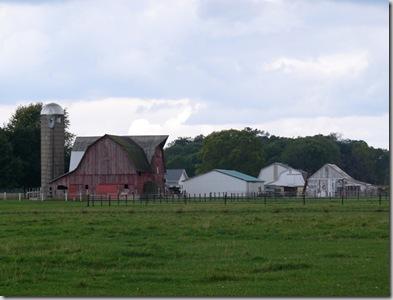 cu amish farm2