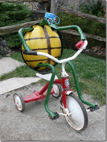 rbg turtle