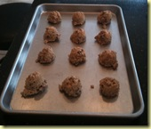 Oatmeal Raisin Cookies Ready for Oven