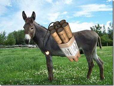 donkey_bomb