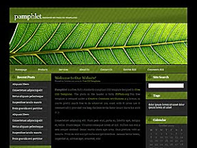 Finance Pamphlet Free Wordpress Theme