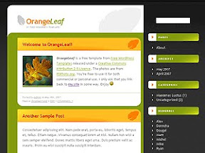 Finance Orange Free Wordpress Theme