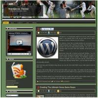 Free Wordpress Cricket game Theme