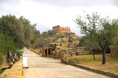 Sizilien ist im Winter grün - auch im Tal der Tempel bei Agrigento