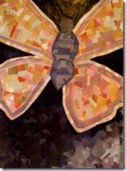 borboleta[1]