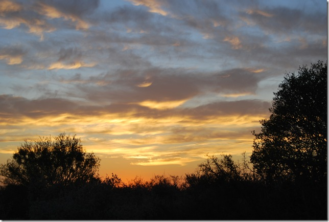 ranch sunset 2