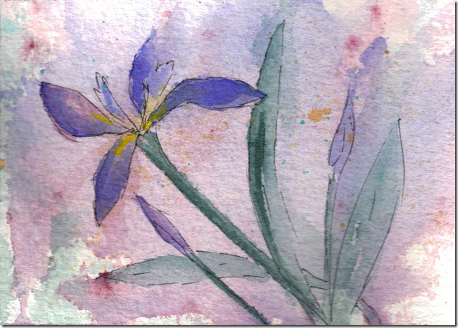 Single Iris watercolor painting