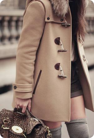 thecoat