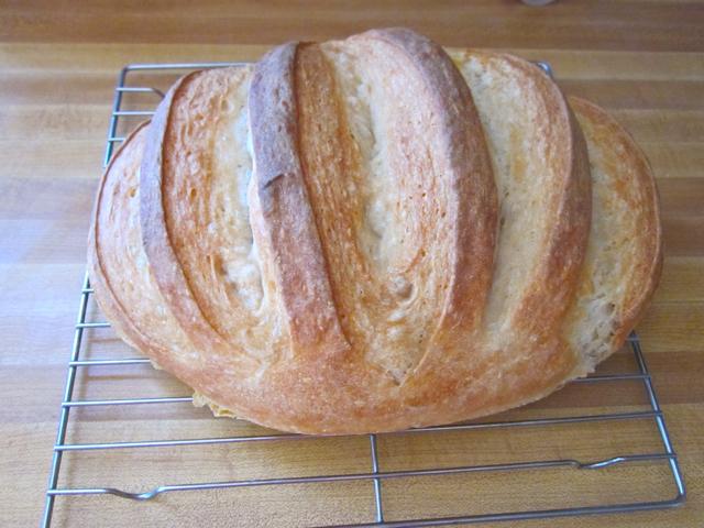 no-knead brea