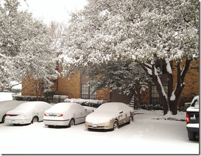 10.  Snow