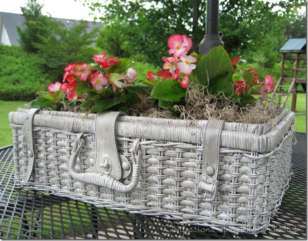 shabby  basket planter