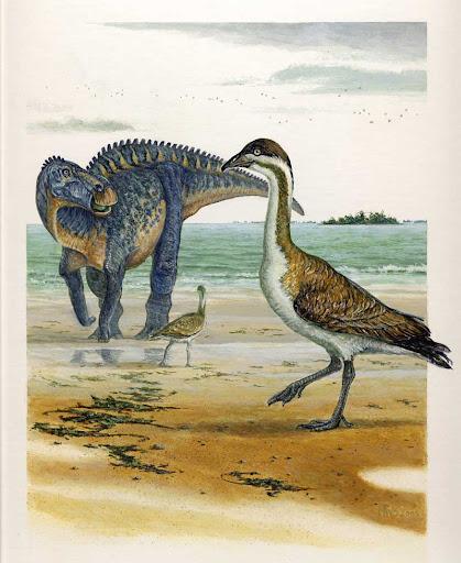 Dinosaurio y aves