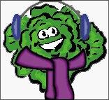 cold lettuce