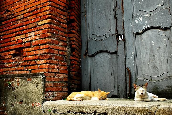 taken at Fort Santiago, Intramuros