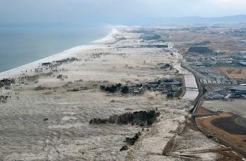 焦点大图:日本地震