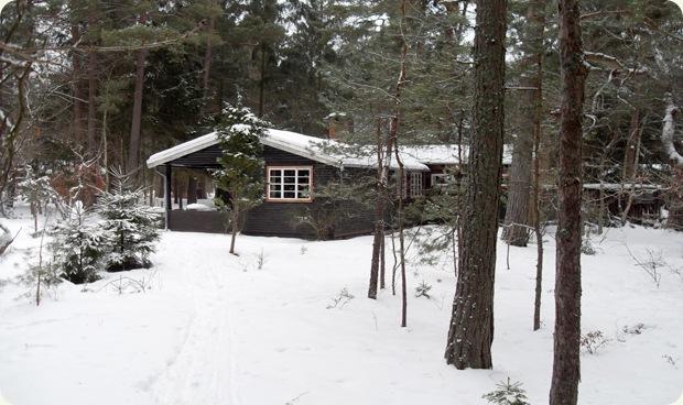 huset i skoven