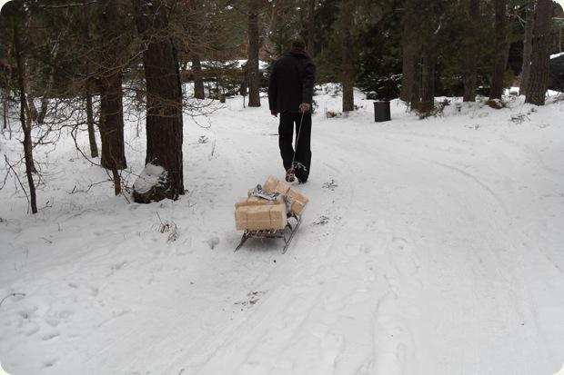 kørsel med meder gennem snedækkede skovveje