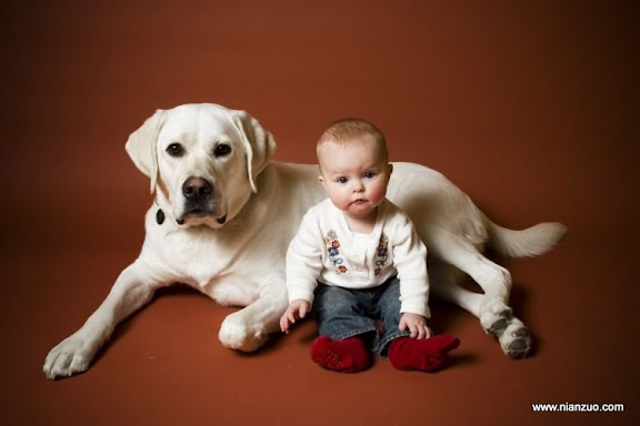 孩子和宠物 ,6 months,backdrop,ella,flash,january,studio