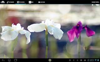 Screenshot of EZ Display