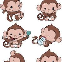 baby monkey.jpg
