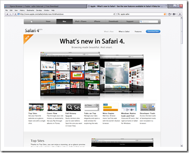 Safari 4 Beta on Windows XP