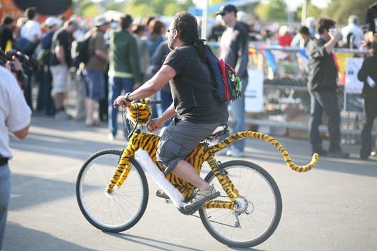 BicycleTiger
