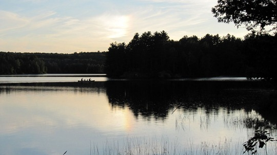 AlgonquinPark8