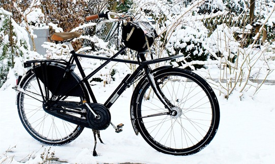 Dutch Winter Bike