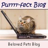 purrrfectblogscreenshot_thumb[1]