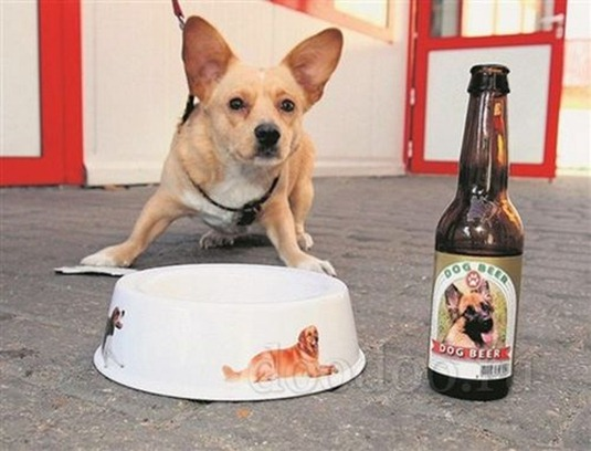 beer-for-dogs02