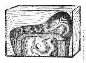 Подгонка грибка