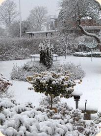 Snehvidt