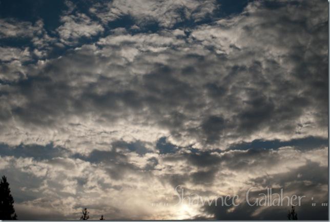 Heaven Skies