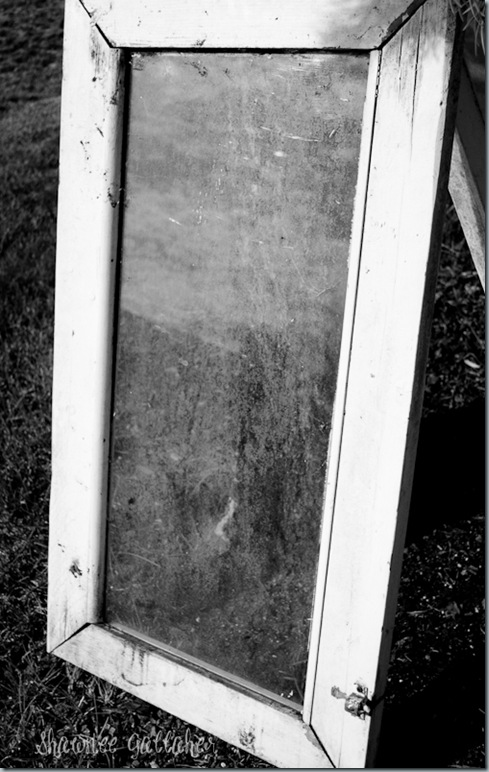 B&W Window