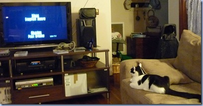 watching tv 2