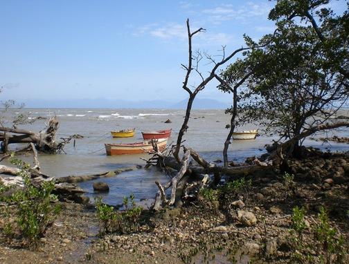 Praia da Gorda (Mangue de Pedra)