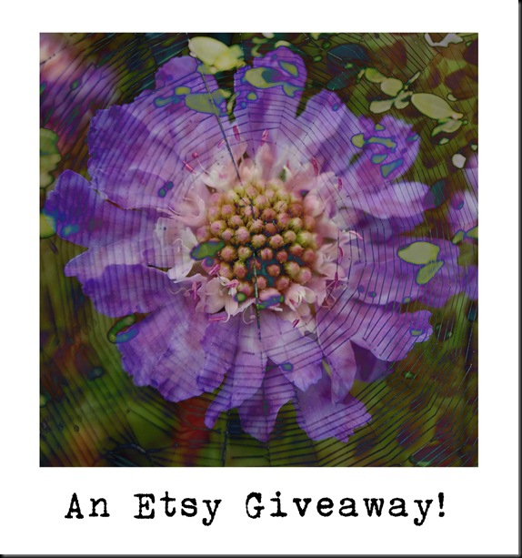 BLOG Giveaway