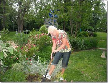 gardening 001