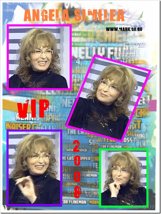VIP 2008