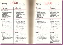 spring calorie plan 3