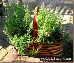 lavenderbasket