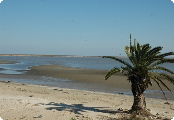 BolivarPeninsula 068