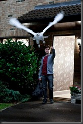 400px-Harry-Potter-073