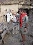 http://lh6.ggpht.com/_Q-b3D5rJSGo/TNb2YiDNbnI/AAAAAAAAEv4/f1EUZLLx94c/MarocBest%20%28442%29.JPG