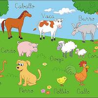 LÁMINA MOTIVADORA DE LOS ANIMALES DOMESTICOS.jpg
