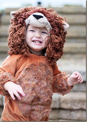 Crawford Lion
